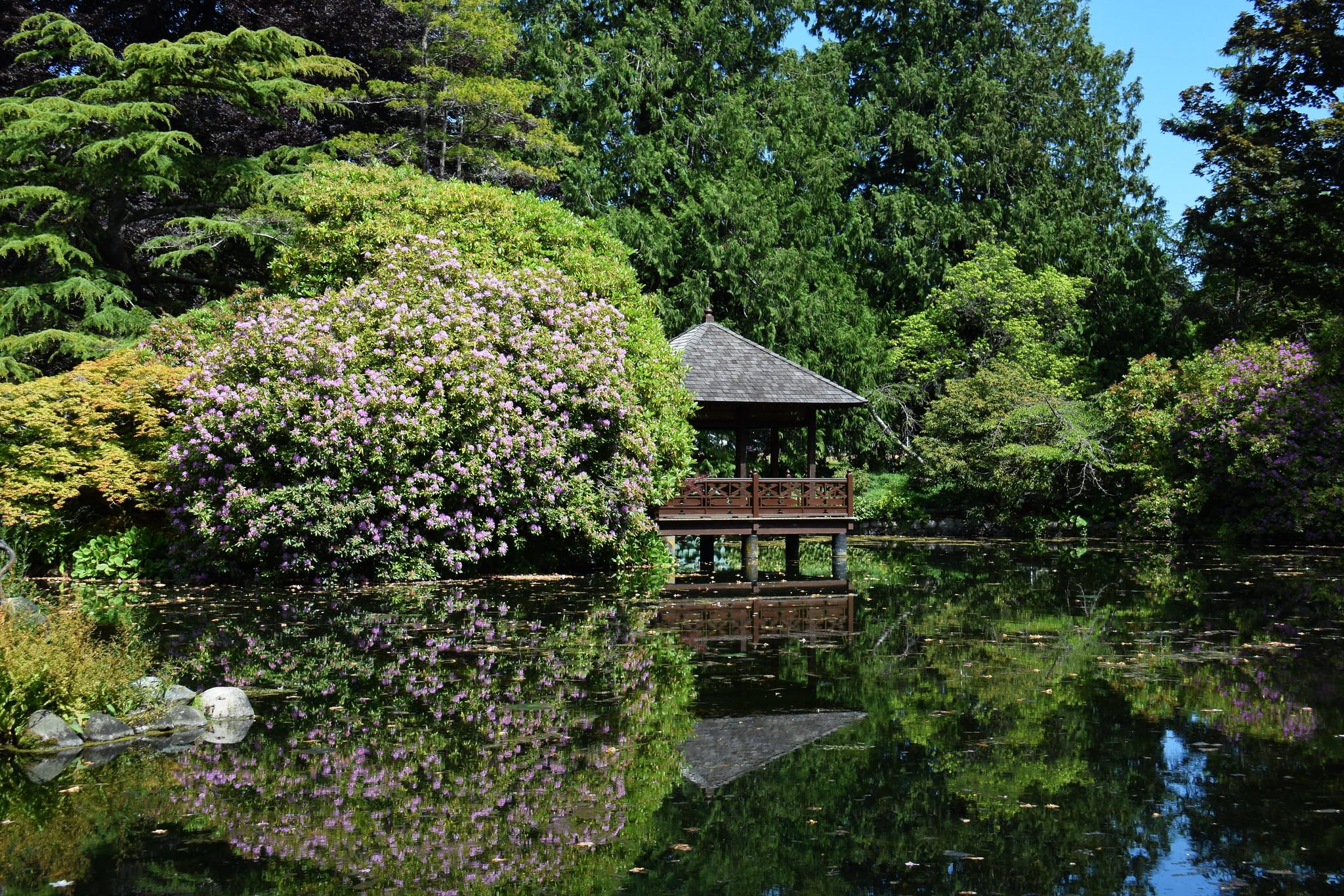 Japanese Garden | Flickr - Photo Sharing!