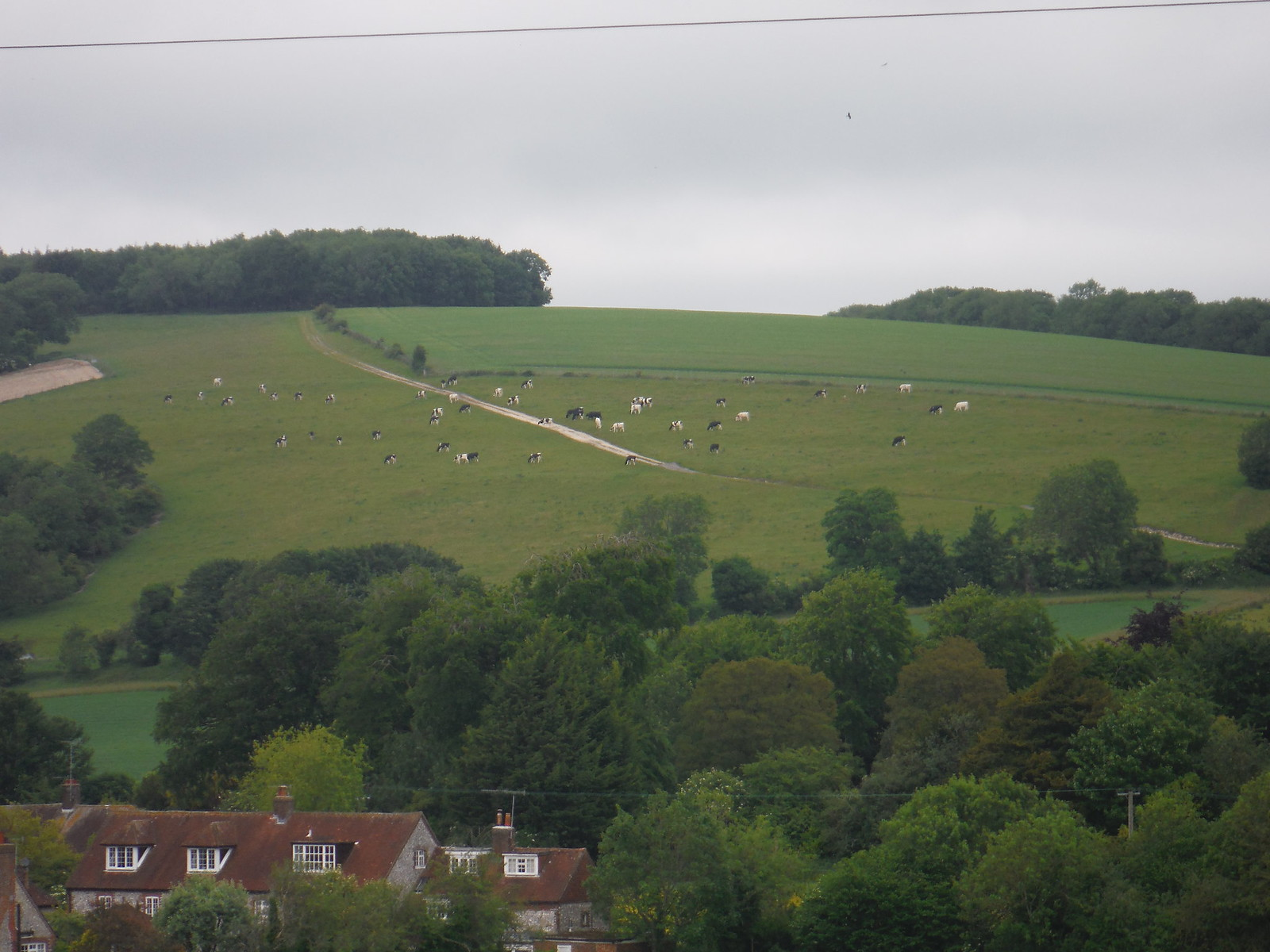 The hill to be climbed behind East Dean SWC Walk 239 Halnaker to Chichester via Cass Sculpture Park and Goodwood