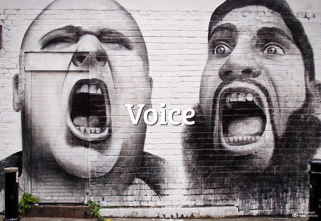 Flickr Friday: voz