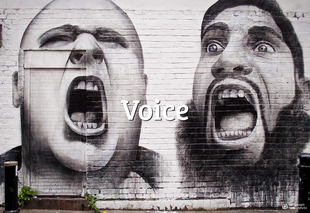 Flickr Friday - 128 - Voice