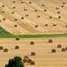 Après la récolte by franfran37