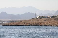 La mer rouge, Sharm el sheikh, Egypte