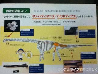 人と自然の博物館タンバティタニス説明