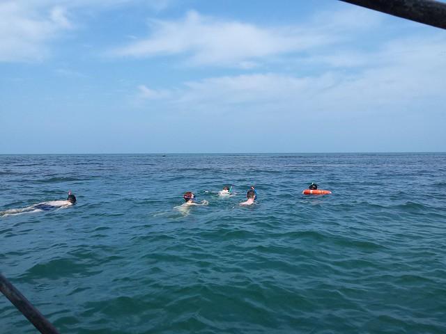 Bar Reef Snorkeling in Kalpitiya