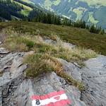 2015_Tirol_119