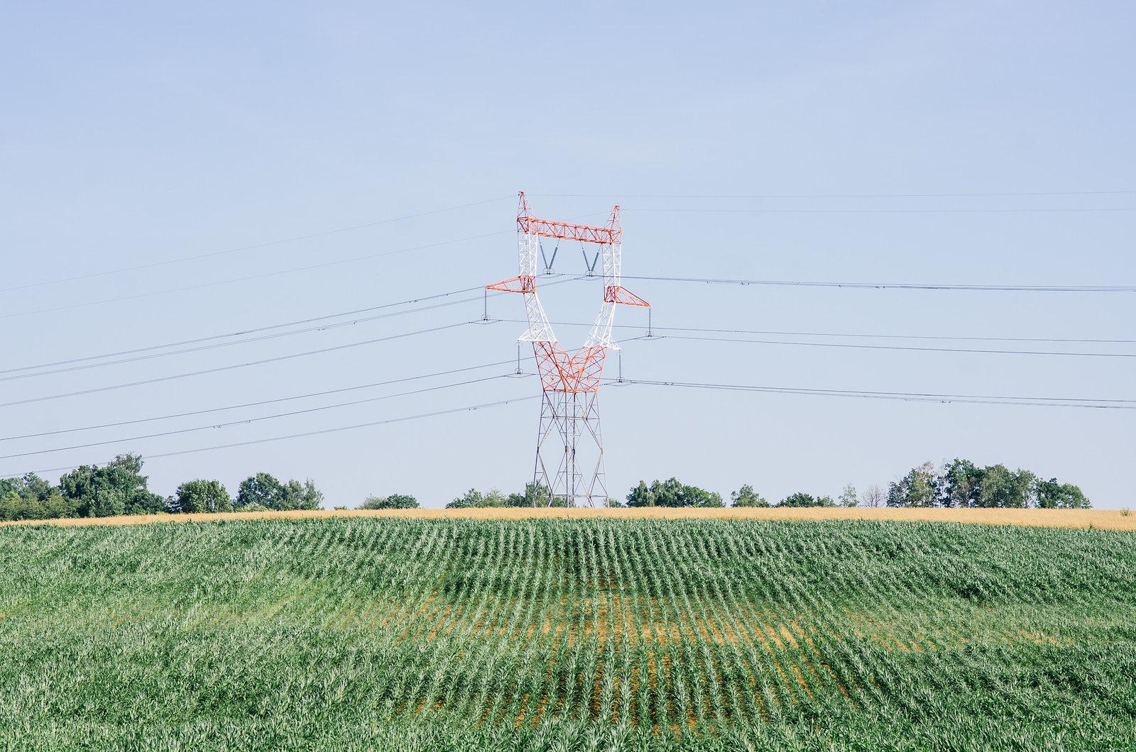 Tourisme vert en Haute-Marne - Coup de chaud au paradis - Un colosse