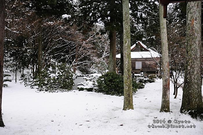 2014雪三千院 (8).jpg