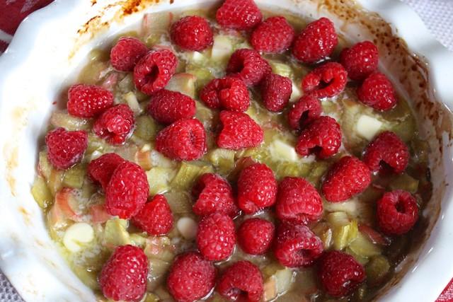 roasted-raspberry-rhubarb-sauce