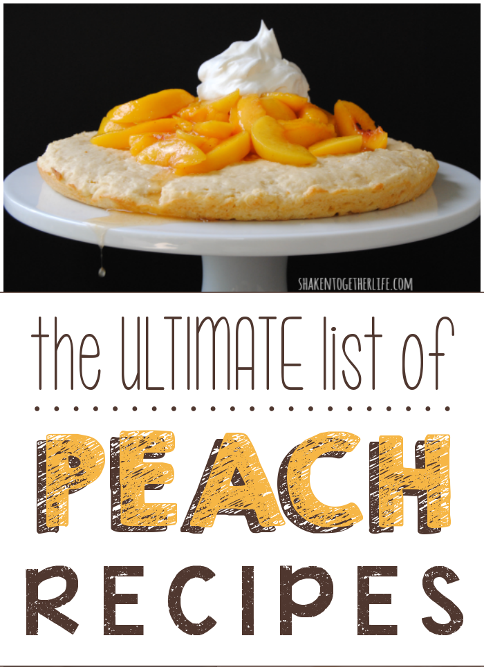 The ULTIMATE List of Peach Recipes - bloggers add your links!