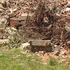 Ruins and Rubble 5