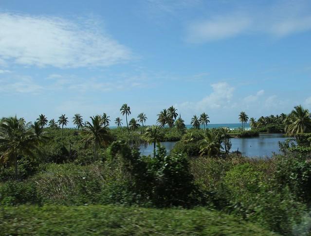 Die Küste zwischen Antalaha und Sambava