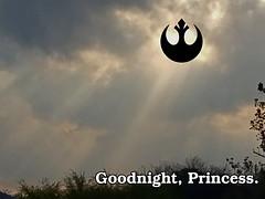 Tribute to Leia.