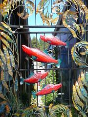 Fish gate