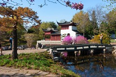 printemps au Jardin Botanique de Montréal--6