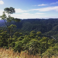 It's been a while since I've been #cycling #goldcoast #hinterland #hillclimb #wymtm