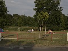 Zeesen/Krummensee August 2015