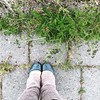 leg warmers in August! #handknittingassociationoficeland