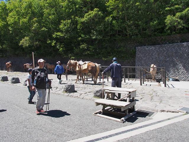 五合目的騎馬登山服務