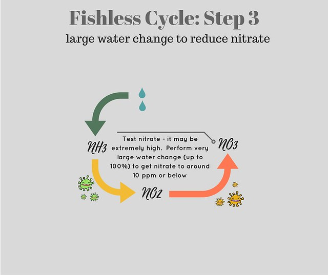 diagram showing step three of fishless cycle - water change to reduce nitrate