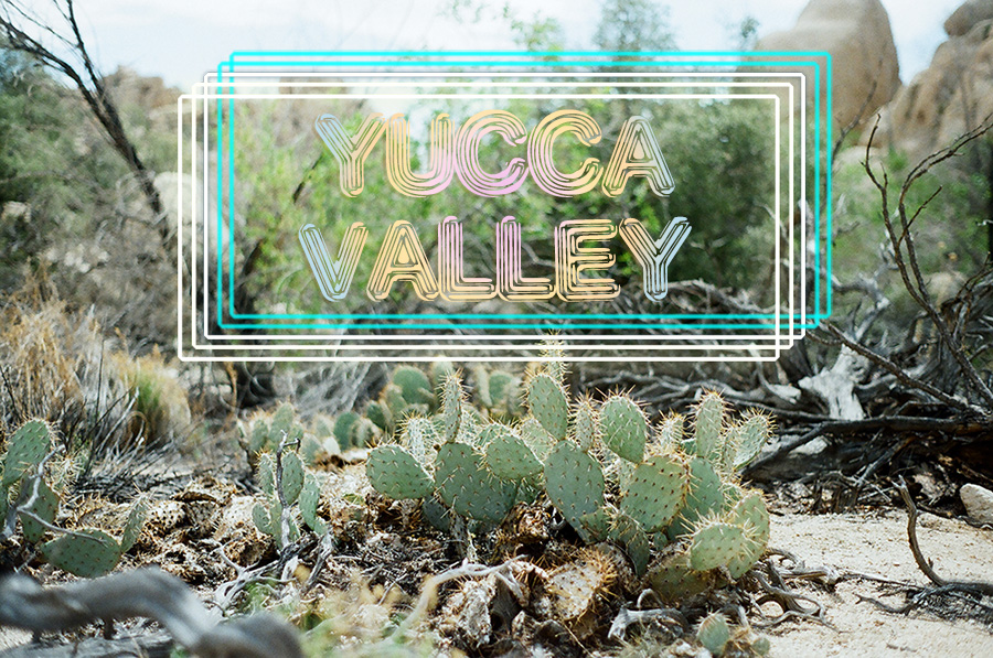 yucca-valley-group-9