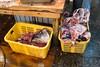 Tsukigi inner market by gm.jabs