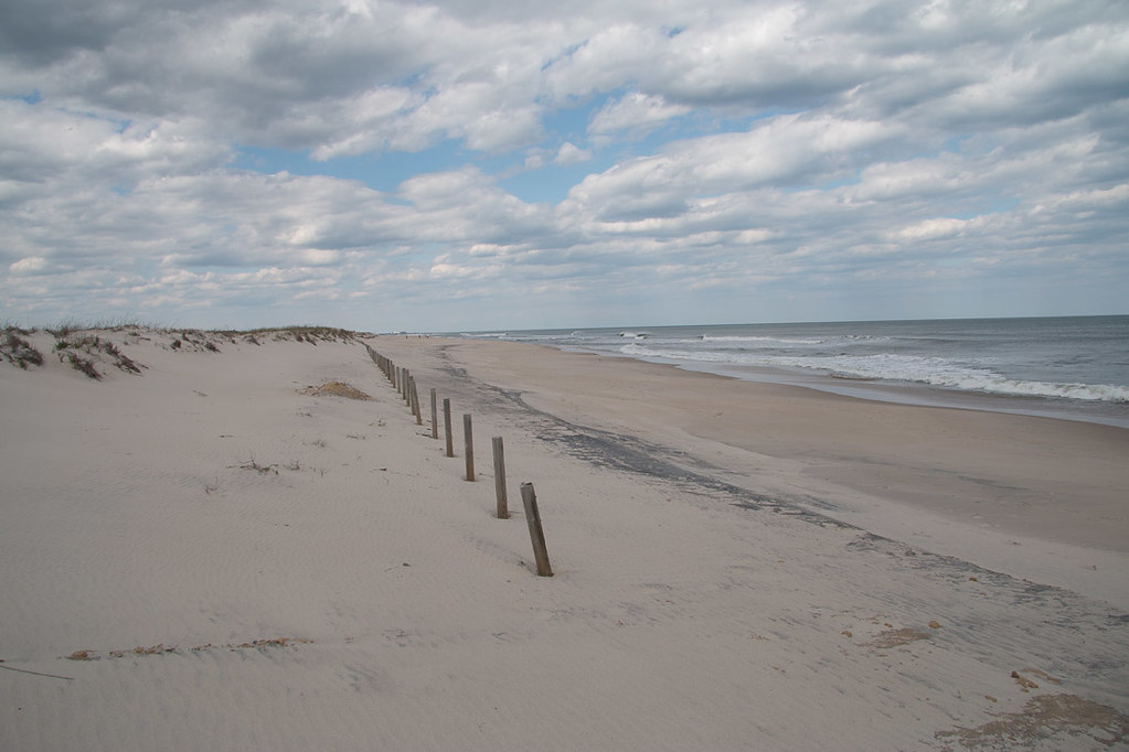 Beach at Assateague State Park | Campground
