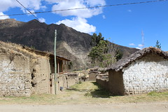 Tinca, Peru