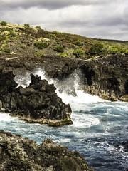 Hawaii-1502