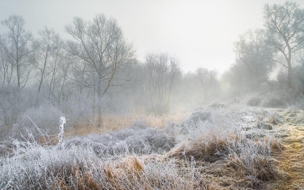 Freezing light 2
