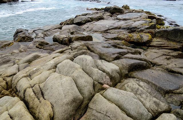 Some Coastal Rocks