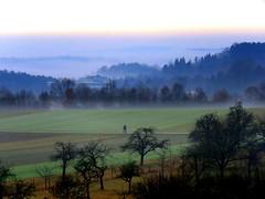 #Mist-and-Fog
