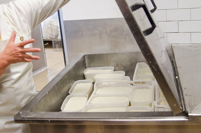 20150522-Cheesemaking-at-Corzano-e-Paterno-Winery-0269