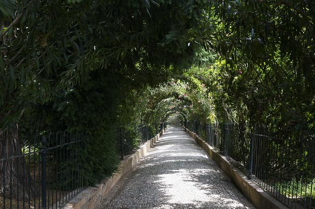 13. Alhambra