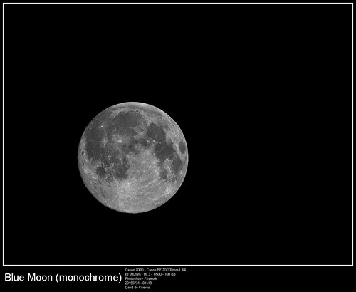 20150731_Blue Moon_Monochrome