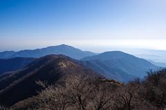 丹沢表尾根と大山@塔ノ岳