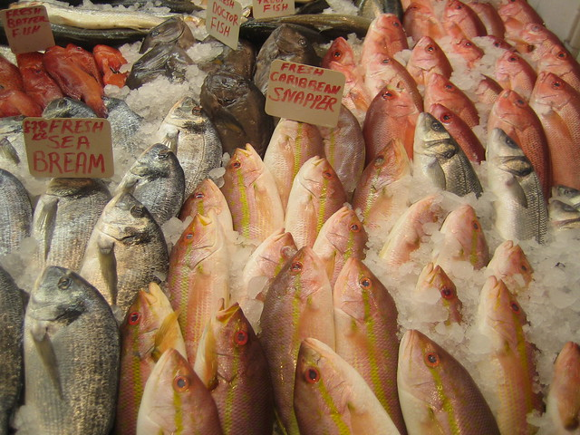 Wet fish shop fresh fish wet fish shop morning lane for Is a fish wet