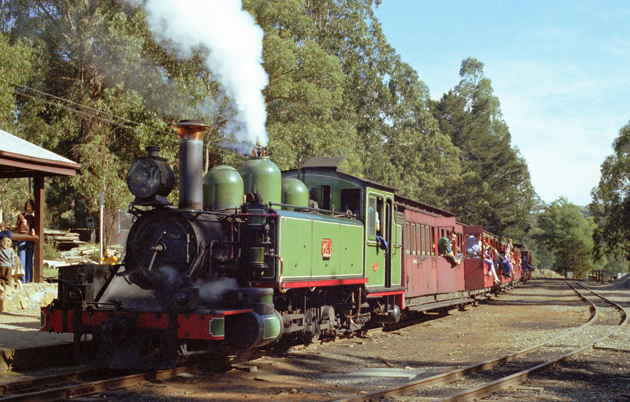 Puffing Billy line by Michael Jefferies