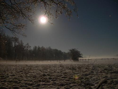 schnee trees winter sky moon snow night germany stars geotagged mond nacht himmel creativecommons bäume fischerhude fz30 sterne wümmewiesen nightsights geo:lat=5311303715110389 geo:lon=9060732075301894