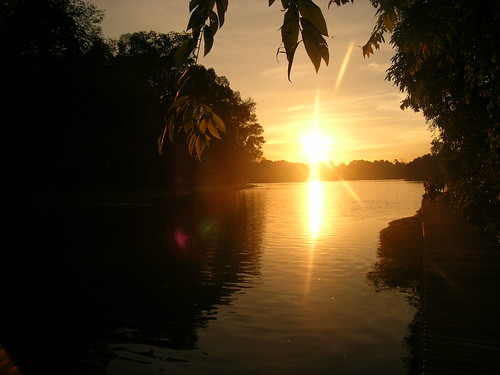 Sunset at MacRitchie