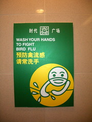 Bird Flu Hygiene
