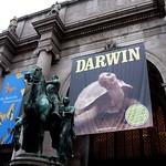 Darwin Exhibit - AMNH in NYC