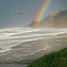 New Year's Rainbow on the Oregon Coast (Zoom)