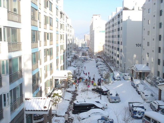 Snowfall in Ulsan, Korea - Flickr CC hucker