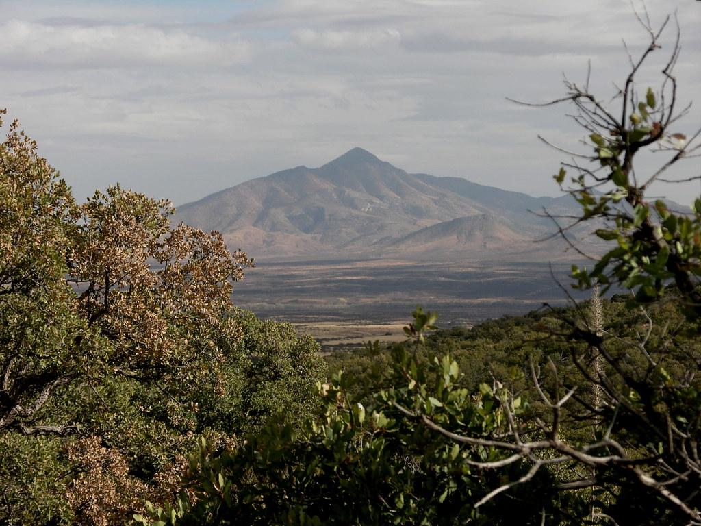 Arizona - Coronado National Monument - Looking to Mexico - January 2006