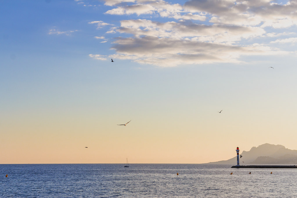 the lighthouse and seagulls