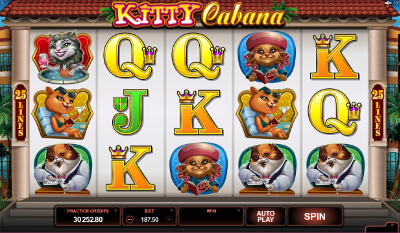 Kitty Cabana slot game online review