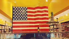 LEGO Stars and Stripes at the Burlington Store with Lady Liberty