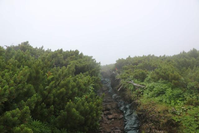2014-07-21_01817_北海道登山旅行.jpg
