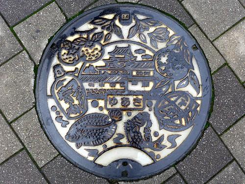 Yuasa Wakayama, manhole cover 2 (和歌山県湯浅町のマンホール2)