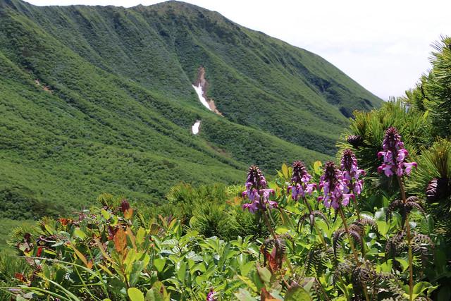 2014-07-22_02953_北海道登山旅行.jpg